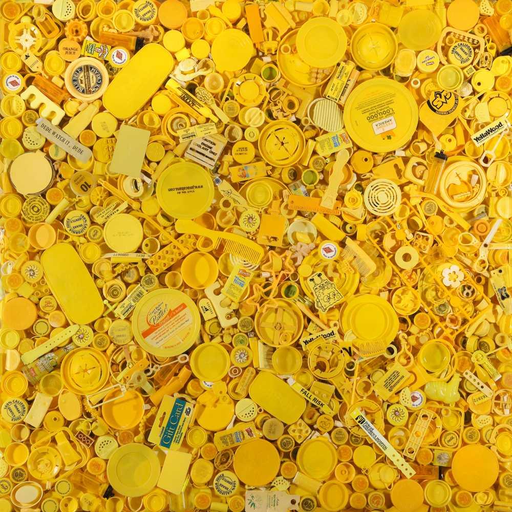 Yellow ® Shelia Rogers, www.lumas.com