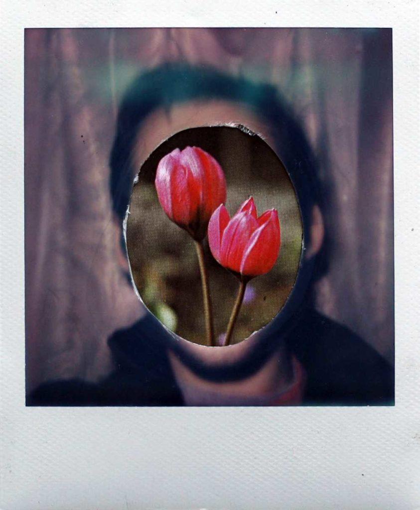 Instant Art, Christopher Manning 15