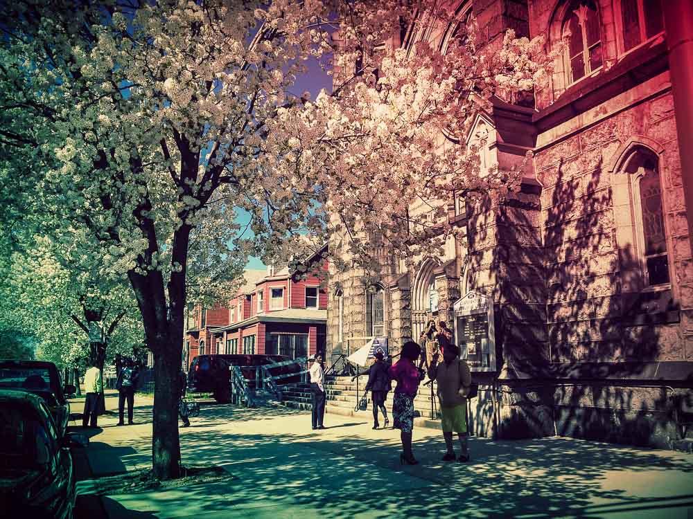Gospel und Blüten liegen in der Luft