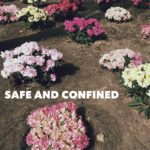 SAFE.AND.CONFINED