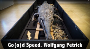 Video. Go(o)d Speed. Wolfgang Petrick