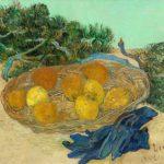 Stillleben Barberini 2019 van gogh f_502 stillleben mit orangen zitronen handschuhen (c) washington national gallery-2