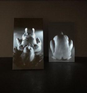 Galerie im Körnerpark zeigt The Process of Becoming