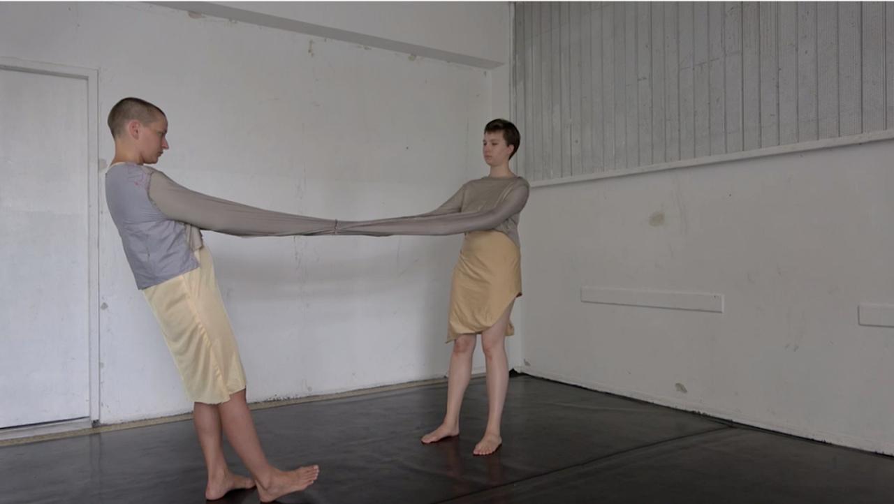 Lecture Performance im Bärenzwinger